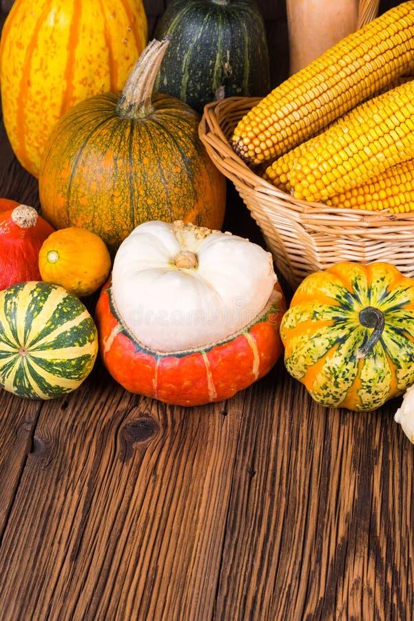 Motif d'Autumn Thanksgiving avec un panier plein avec des épis de maïs et de différents potirons colorés sur un vieux fond en boi photo stock