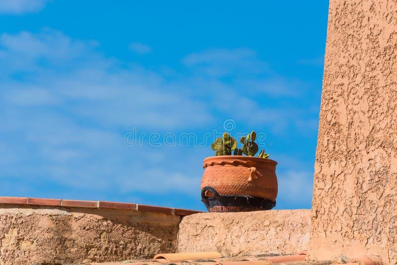 Motif méditerranéen, pot de fleurs avec le cactus image libre de droits