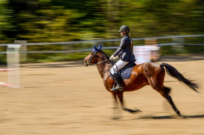 A competitor in a show jumping class. Motion blur of a competitor in a horse show jumping class royalty free stock photography
