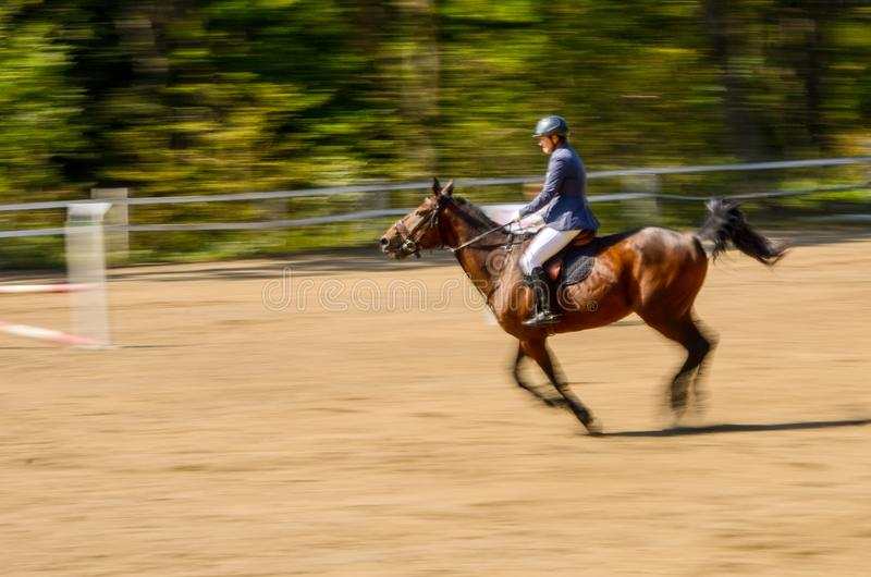 A competitor in a show jumping class gets ready for a jump. Motion blur of a competitor in a show jumping class getting ready for a jump royalty free stock photo