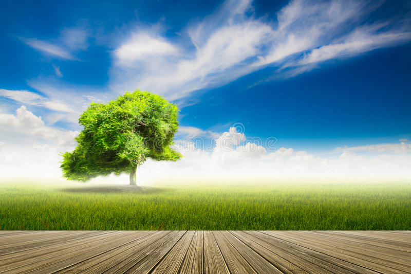 Motion blur image with nature background, Blue sky with clouds o. Ver field and wood terrace stock image