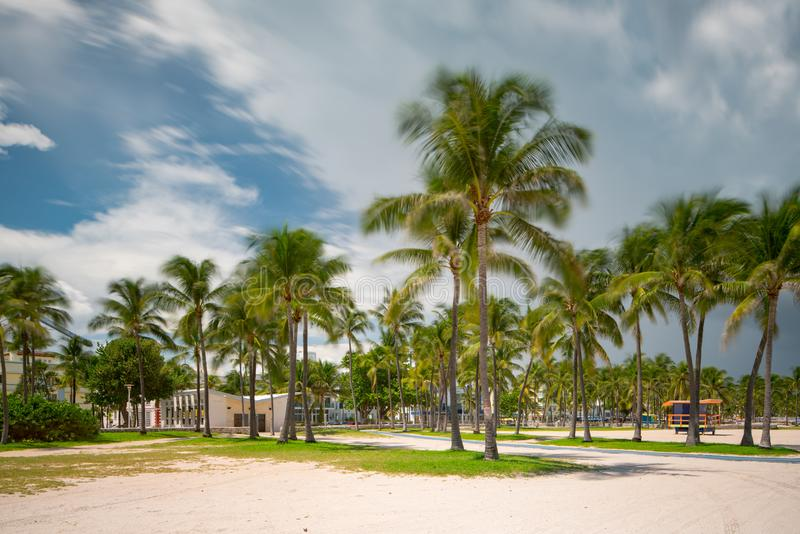 Motion blur palm trees on Miami Beach with storm clouds approaching. Long exposure Florida summer scene royalty free stock image