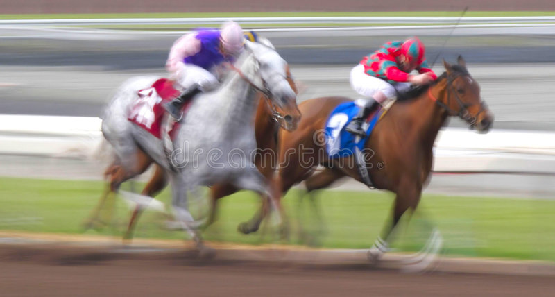 Motion Blur of Racing Horses royalty free stock images