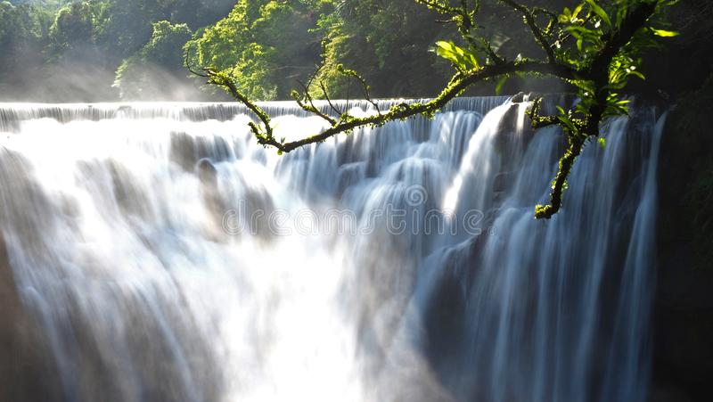 Motion blur of a waterfall and it surrounding mist with tree branches in the foreground. The left side have very strong over. Exposure natural sunlight royalty free stock photo