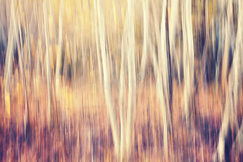 Motion blurred autumn forest, abstract nature background. Motion blurred autumn forest, abstract nature background, color toning applied royalty free stock image