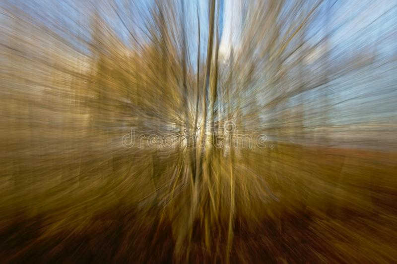 Blurred background with radial lines in green and blue. Motion blurred tree trunks, background with soft radial lines in blue, white and black through royalty free stock photography