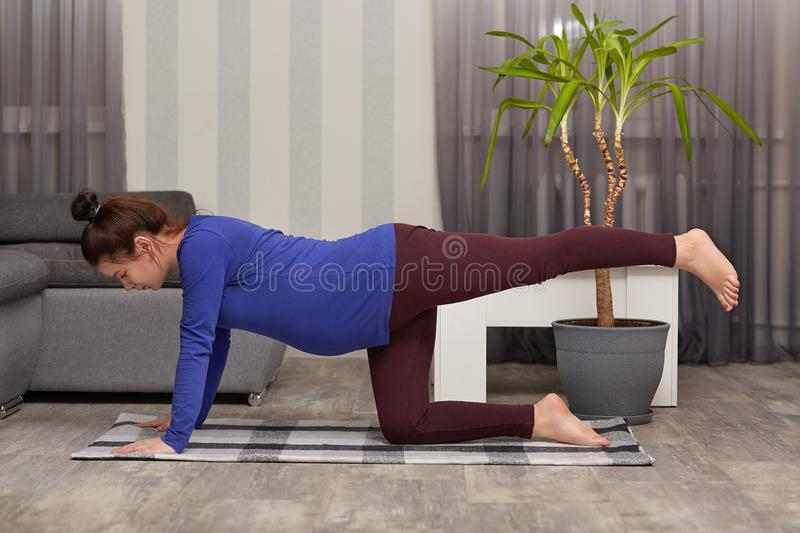 Motivated beautiful expectant mother wears casual clothing, stretches legs, does morning exercises, poses in modern apartment. Alone, demonstrates good royalty free stock photo