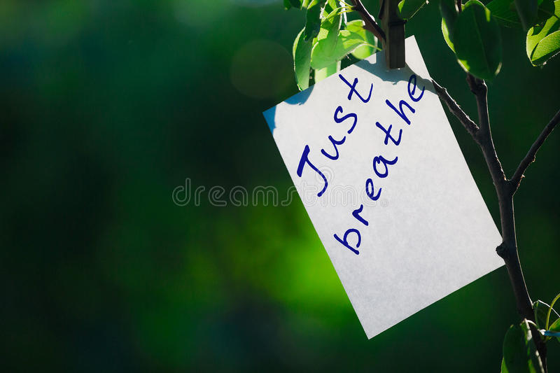 Motivating phrase just breathe. On a green background on a branch is a white paper with a motivating phrase. royalty free stock images