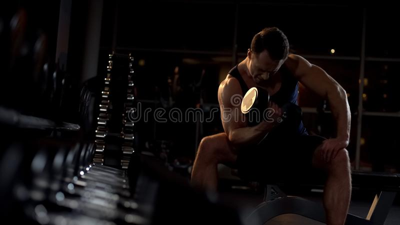 Motivierter Bodybuilder, der die Sitzdummkopflocke, Training glättend tut stockfotografie