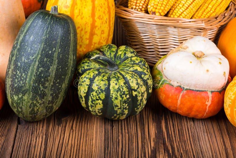 Motivo di Autumn Thanksgiving con differenti zucche variopinte su un fondo di legno rustico immagine stock