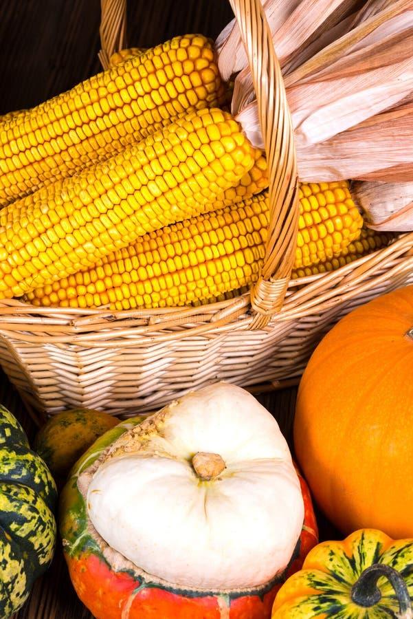 Motivo di Autumn Thanksgiving con un canestro pieno con le pannocchie di granturco e le zucche variopinte differenti fotografia stock libera da diritti