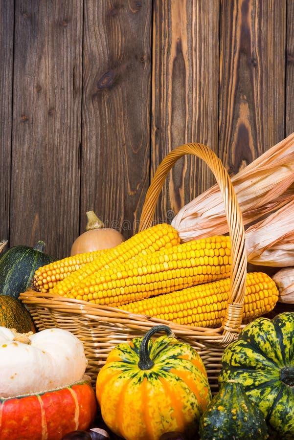 Motivo di Autumn Thanksgiving con un canestro pieno con le pannocchie di granturco e le zucche variopinte differenti su un vecchi fotografia stock libera da diritti