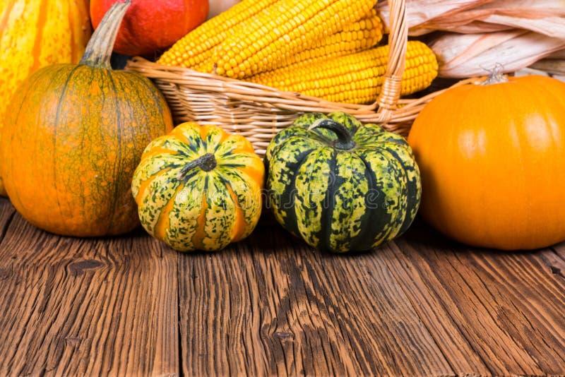 Motivo di festival del raccolto di autunno con due zucche differenti di gorgonzola ed altri davanti ad un canestro con le pannocc fotografie stock