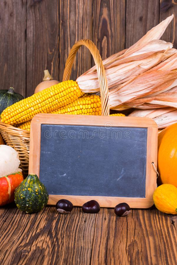 Motivo di festival del raccolto di autunno con le varie zucche davanti ad un canestro con le pannocchie di granturco su un fondo  immagini stock libere da diritti