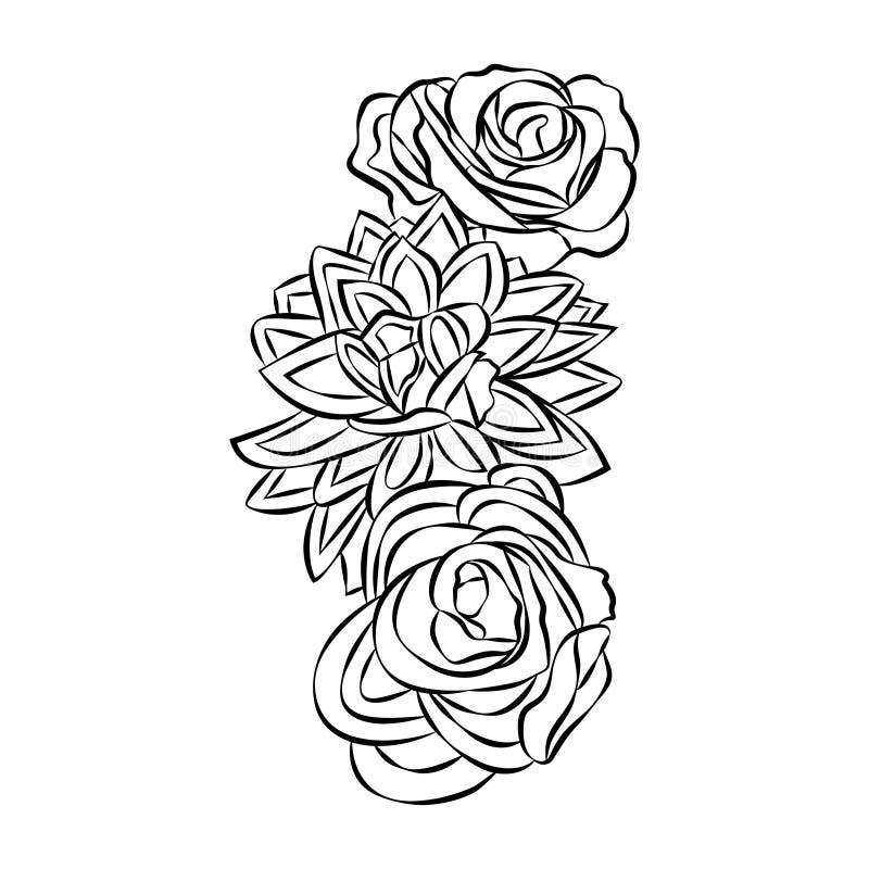 Motivo di Rosa, vettore degli elementi di progettazione del fiore su fondo bianco immagini stock
