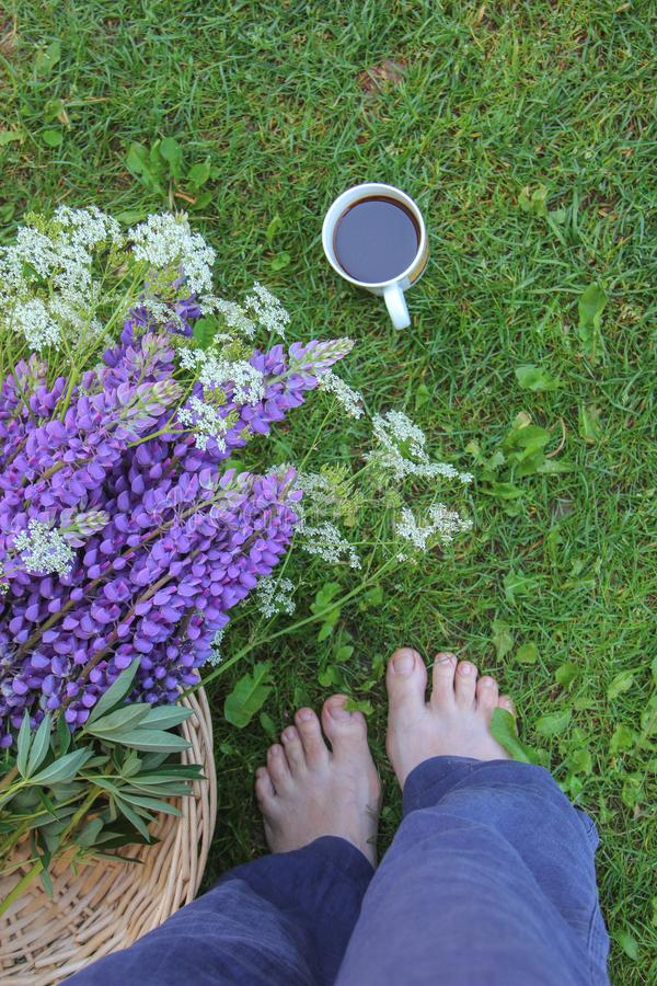 Motivo di una donna che sta a piedi nudi sull'erba, sui fiori selvaggi e su una tazza di caffè immagine stock