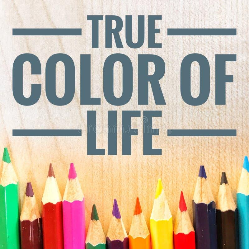 Motivzitate der wahren Farbe des Lebens lizenzfreies stockbild