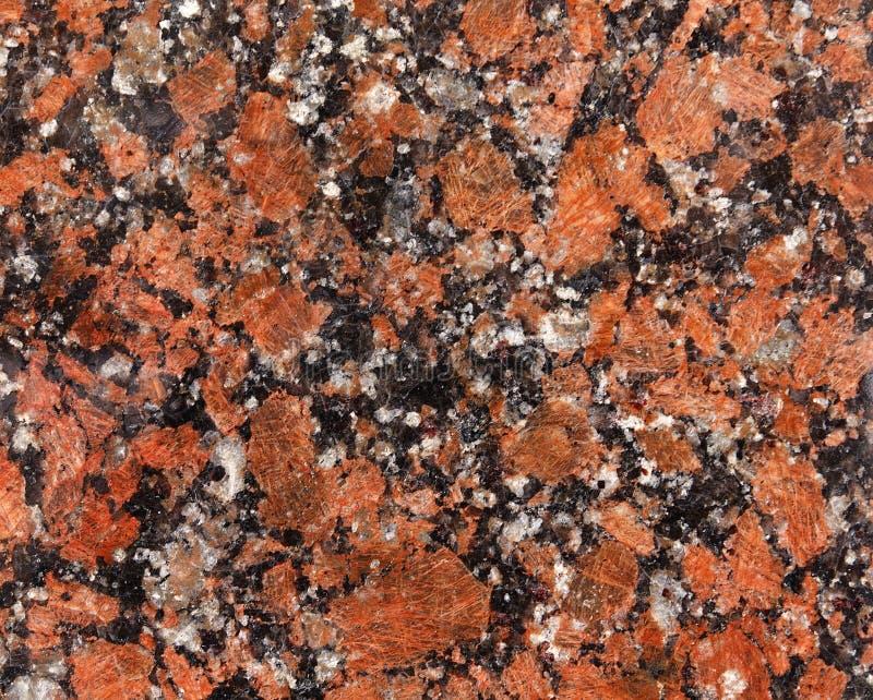 Motley фото, variegated, испещрянный, пестрый, checkered, br заплатки стоковое фото rf