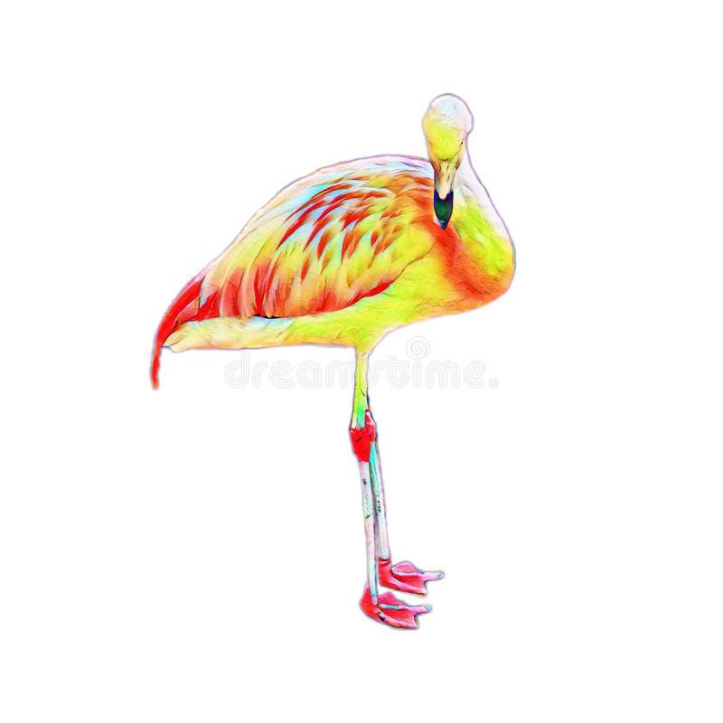 Motley colored flamingo bird standing stock illustration