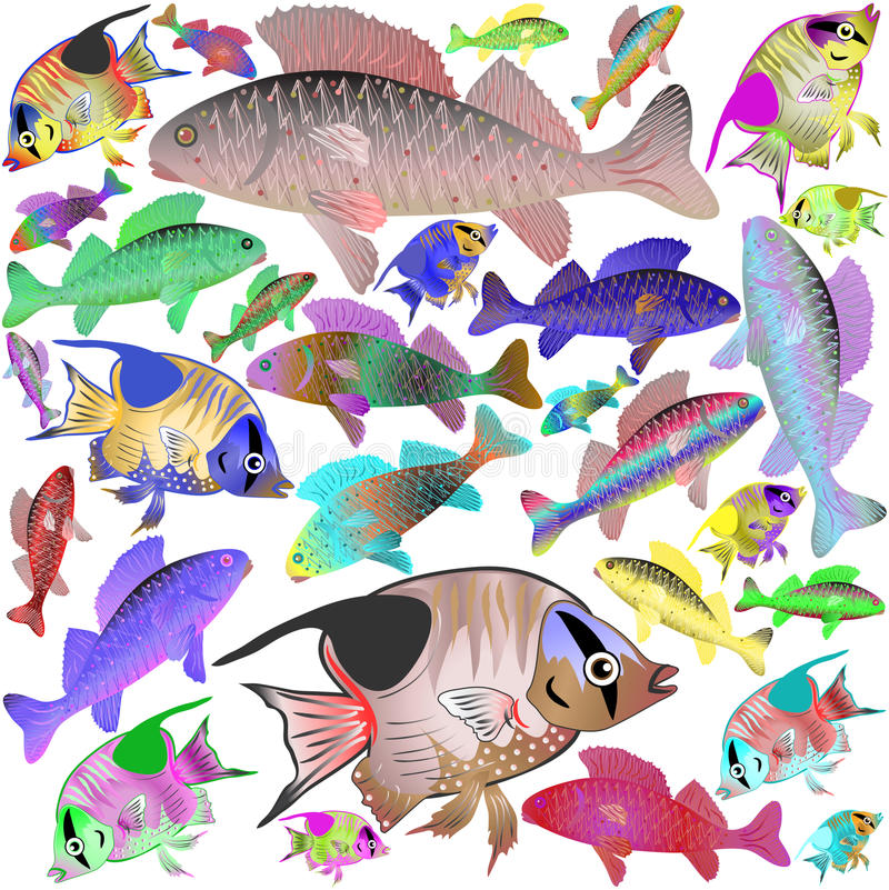 Download Motley sea fishes stock vector. Illustration of design - 25964347