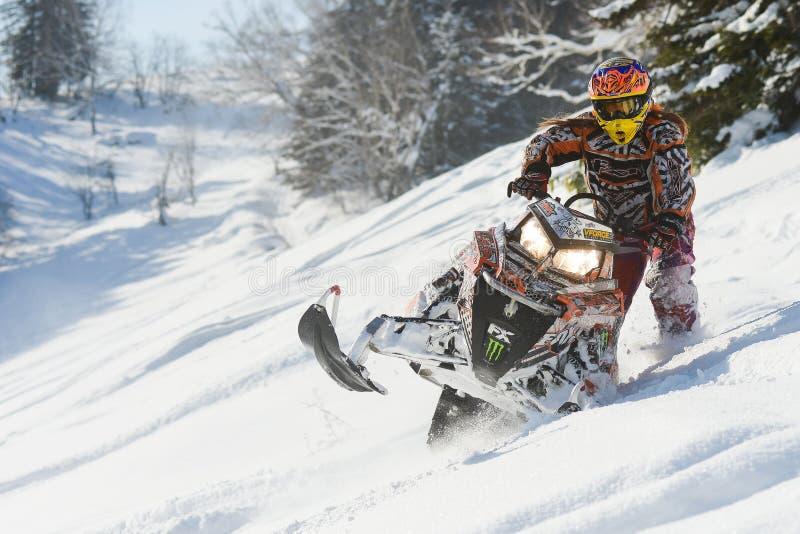 Moto de nieve móvil en bosque del invierno en las montañas fotos de archivo