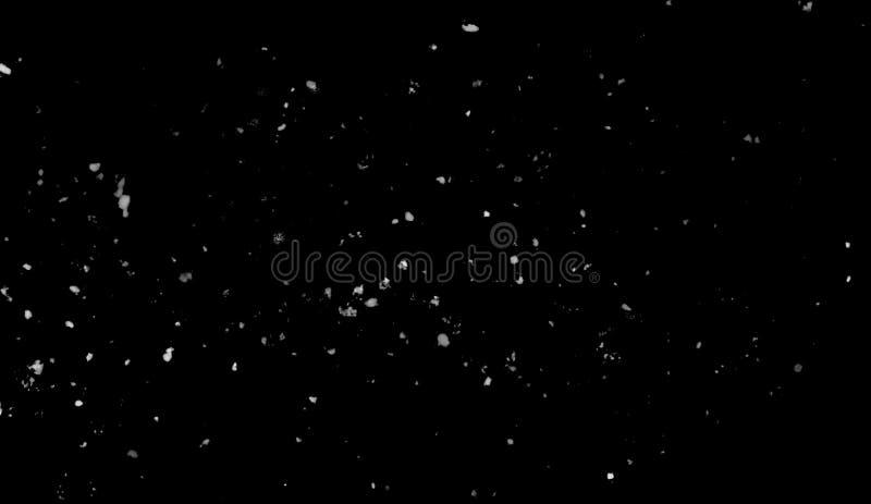 Moto della gelata di neve bianca che scende, isolato su fondo nero Elemento di struttura di progettazione illustrazione di stock