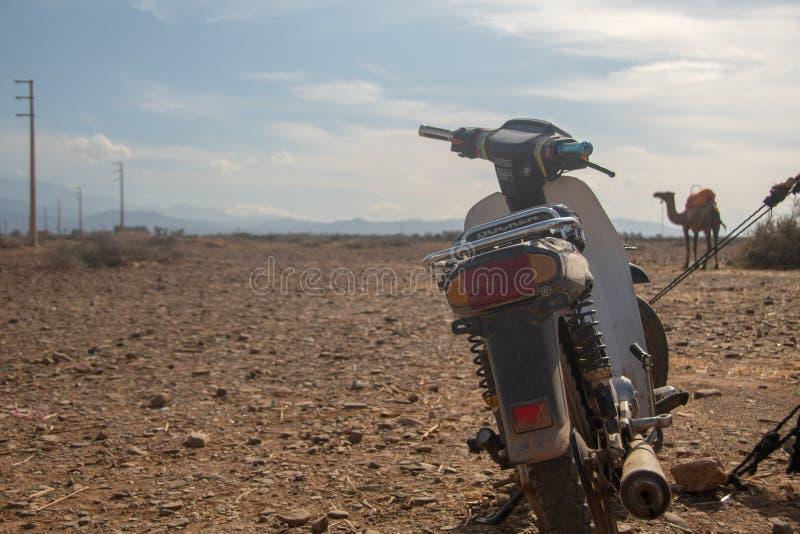 Moto y camello en desierto fotos de archivo libres de regalías