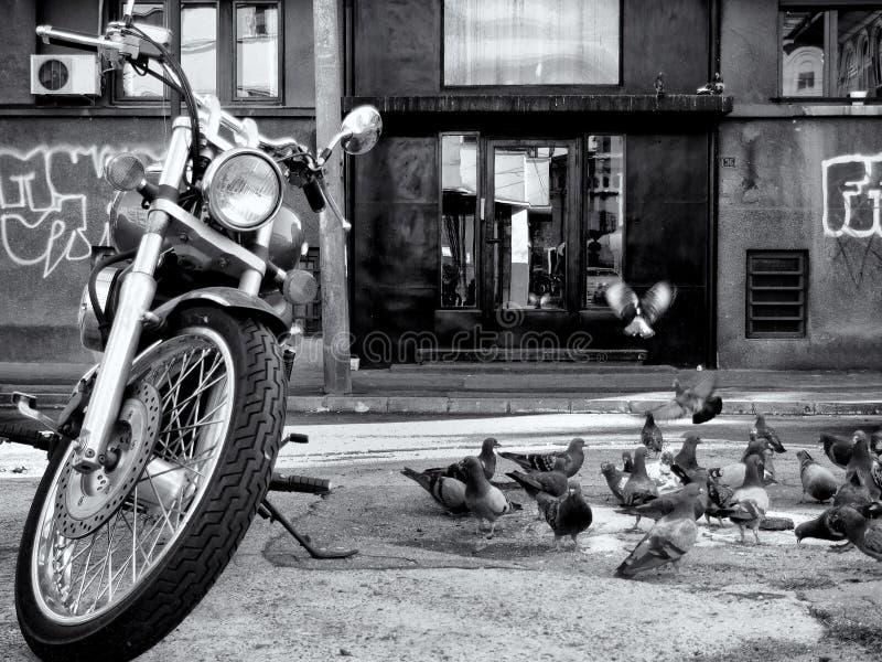 Motocicleta fotografía de archivo