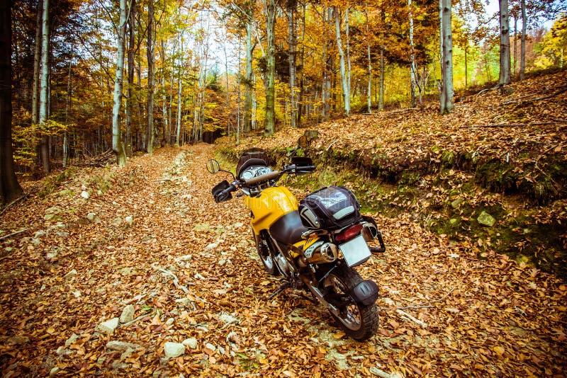 Motocicletta di avventura in foresta immagini stock