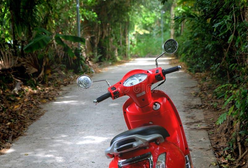 Motocicletta rossa parcheggiata in via ombreggiata verde fotografie stock
