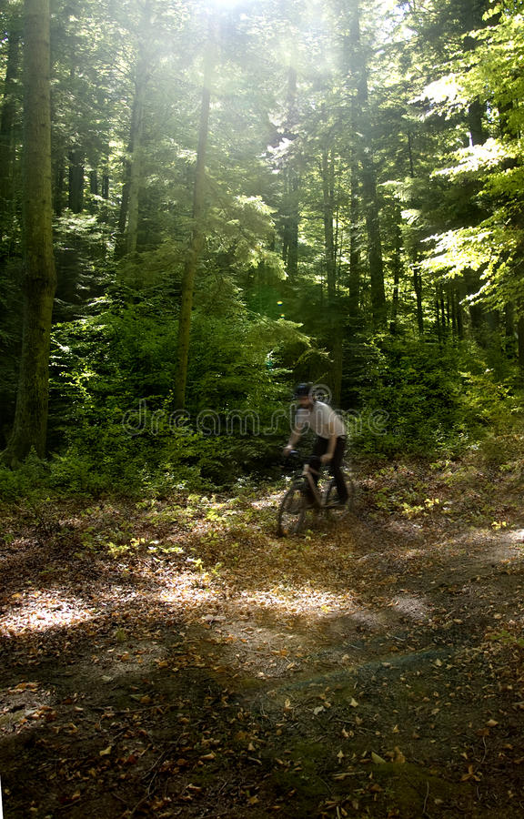 Motociclista da montanha fotos de stock
