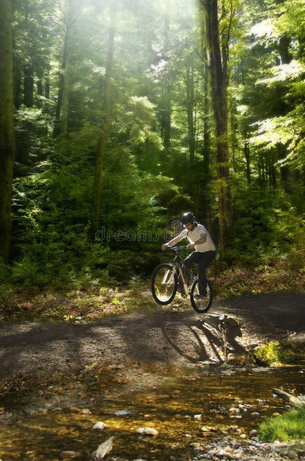 Motociclista da montanha imagens de stock royalty free