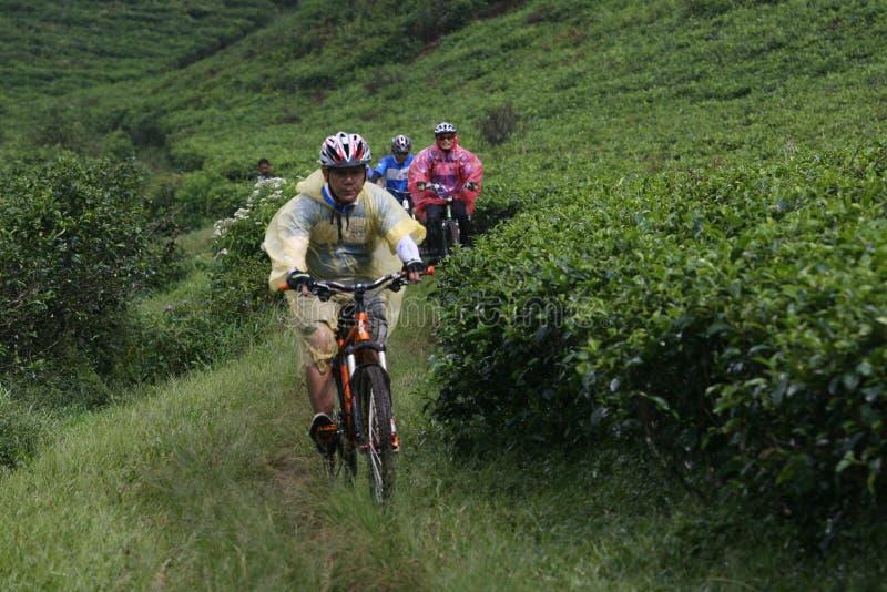 Motociclista da montanha fotografia de stock royalty free