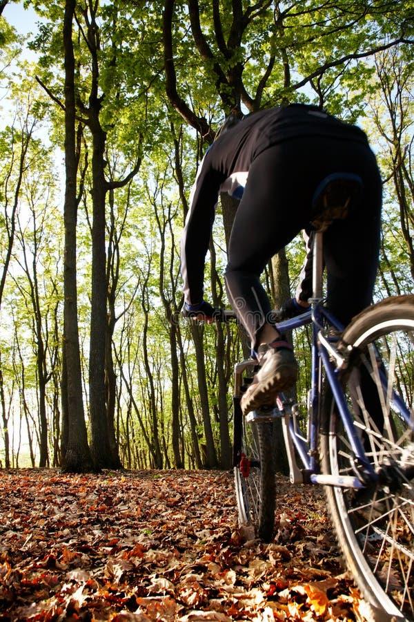 Motociclista da montanha imagem de stock
