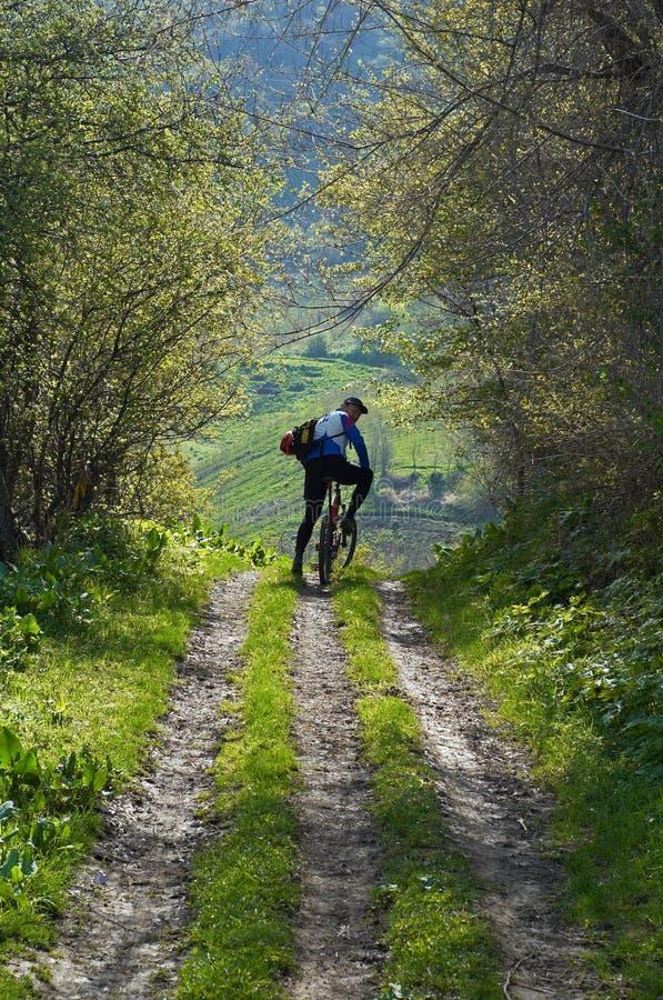 Motociclista della montagna sulla strada rurale fotografia stock