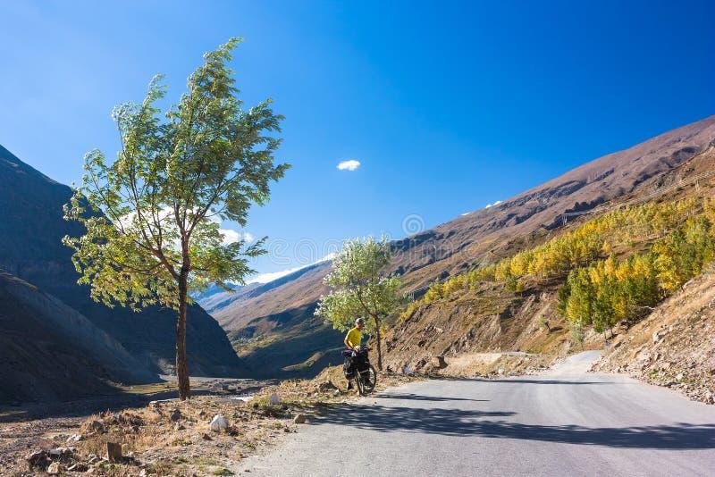 Motociclista novo que está a árvore próxima na estrada das montanhas foto de stock