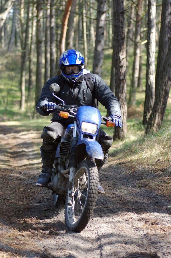 Motocross door bos stock afbeeldingen