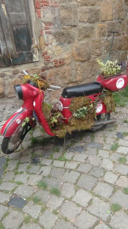 Motocycle z kwiatami zdjęcie royalty free