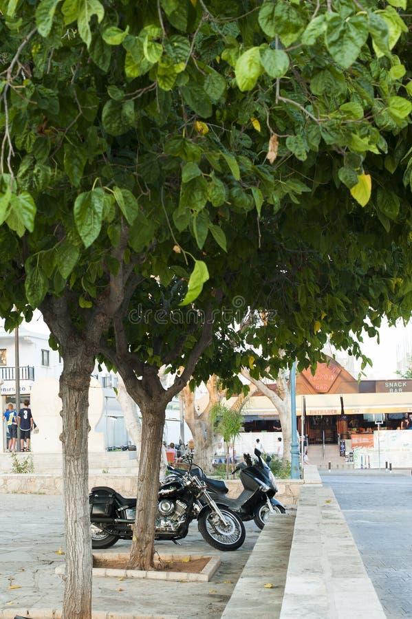 Motocycles debajo de los árboles imagen de archivo