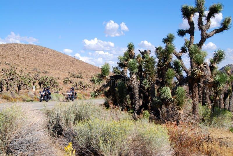 Motocykl jazda w pustyni obraz stock