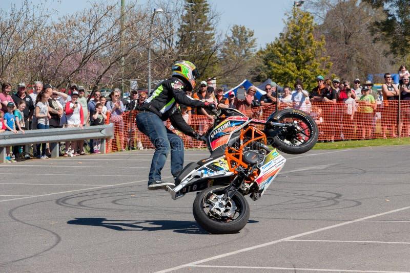 Motocyklu wyczynu kaskaderskiego jeździec - Wheelie zdjęcia stock
