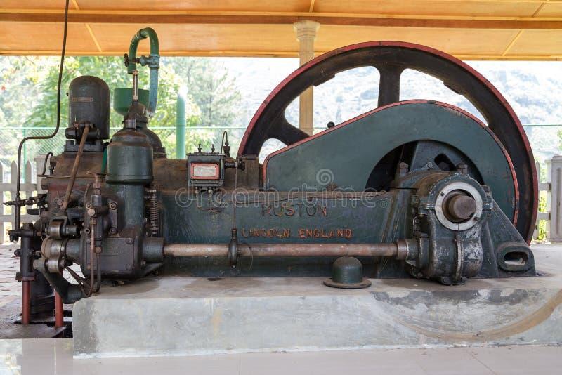 Motor diesel de Ruston e de Hornsby dentro da fábrica azul do chá do campo imagem de stock