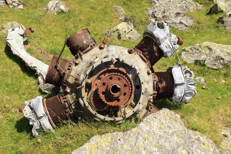 Motor radial de Blenheim fotografía de archivo