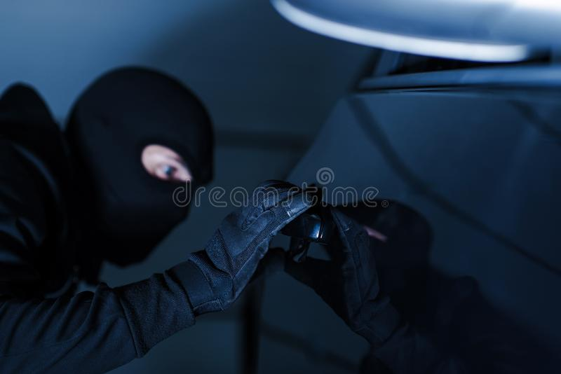 Motor Vehicle Theft royalty free stock images