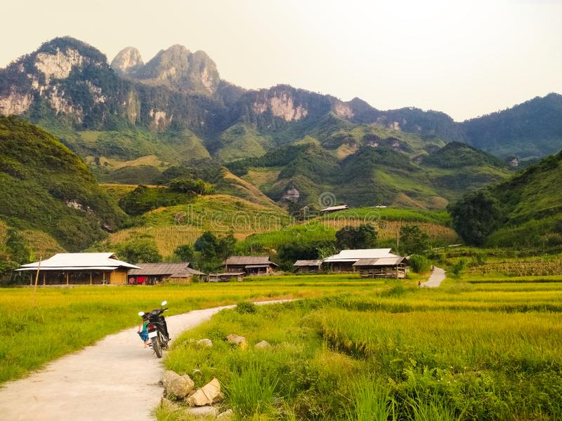 Motorbike parked next to rice fields with mountains. Motorbike parked next to bright green rice fields surrounded by local village and high mountains. Travel and royalty free stock photography