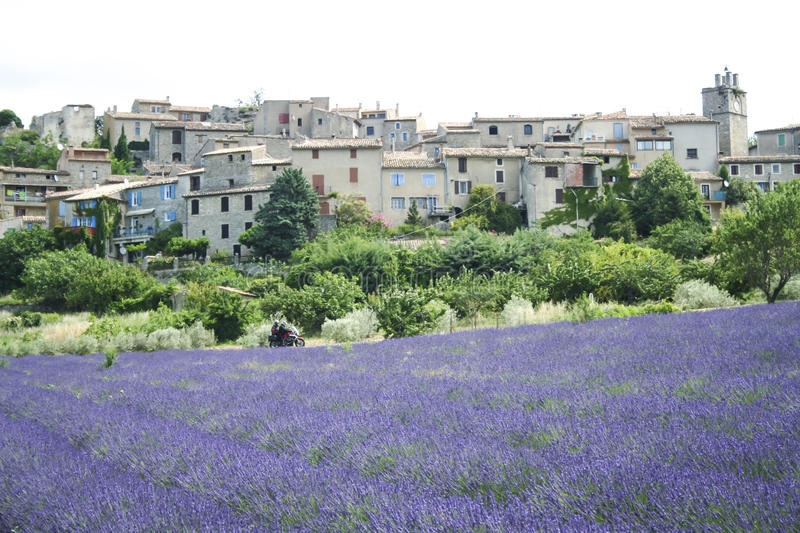 Motorbike tour french lavender fields. Couple on motorbike passing lavender flowers in bloom in fields below old hillside town in provence france stock photography