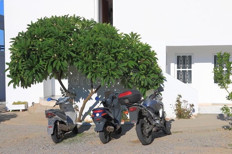 Motorbikes and magnolia. Three motorbikes and a magnolia tree near the wall of the white house on a bright sunny day. Pefkos. Rhodes, Greece royalty free stock images