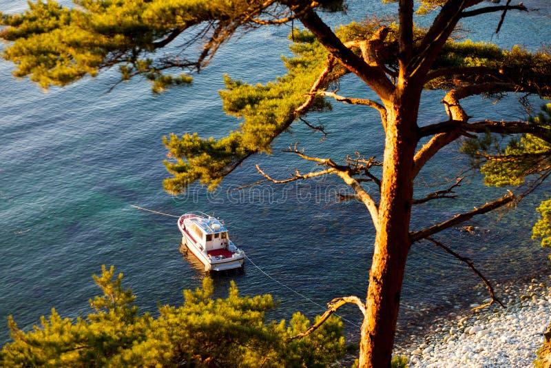 Motorboot in een baai royalty-vrije stock afbeeldingen