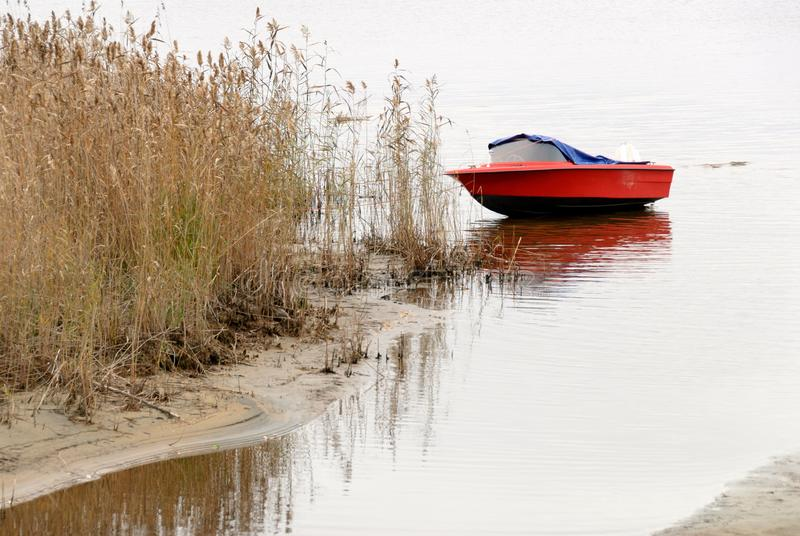 Motorboot en riet op lakeshore in de herfst stock afbeelding