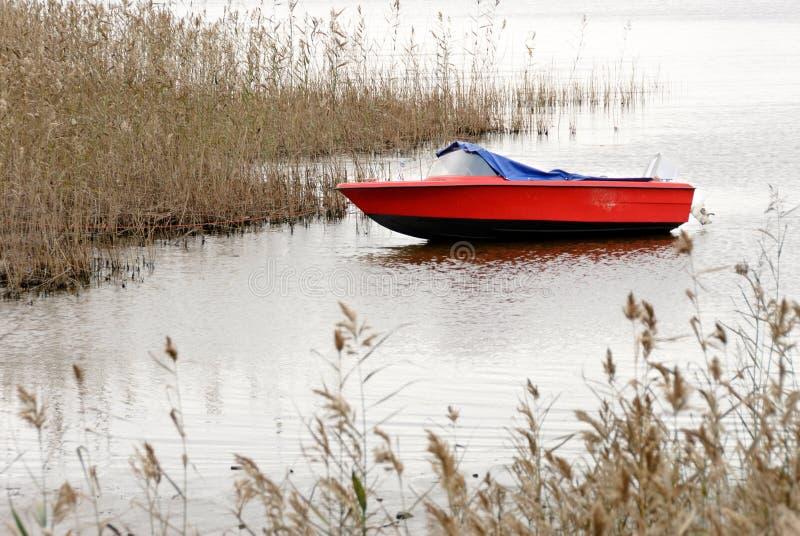 Motorboot en riet op lakeshore in de herfst stock afbeeldingen